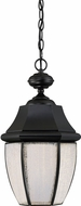 Quoizel NYL1911K Newbury LED Mystic Black LED Exterior Ceiling Pendant Light