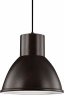 Seagull 6517401BLE-710 Division Street Burnt Sienna Fluorescent Hanging Lamp