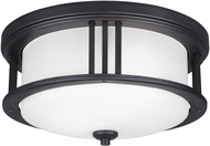 Seagull 7847902EN-12 Crowell Contemporary Black LED Outdoor Ceiling Lighting Fixture