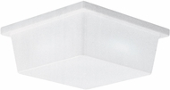 Seagull 7916EG-68 White Plastic LED Outdoor Overhead Lighting