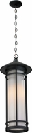 Z-Lite 529CHB-BK Woodland Black 24.5  Tall Outdoor Hanging Pendant Light