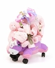 Push And Ride Baby Girl Gift Set