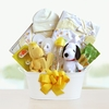 Snoopy & Woodstock New Baby Basket