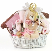 Ultimate Organic Baby Gift Set (Pink Or Blue)