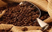 #5 Packaged Coffee for $9.49 Per LB