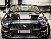 2015-2016 Mustang Products