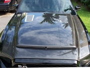Ford Mustang GT Black Mamba Carbon Fiber Hood 2013 2014 (Fits GT and V6)
