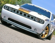 Challenger Grilles