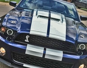 Ford Mustang GT500 Supercharger Mongoose Hood 2010-2014