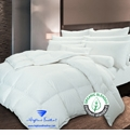 300TC Tencel 625 Loft European White Down Comforter
