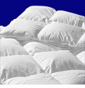 289TC 600 Loft European White Down Comforter