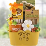 Biscuits and Cookies Dog & Owner Gift