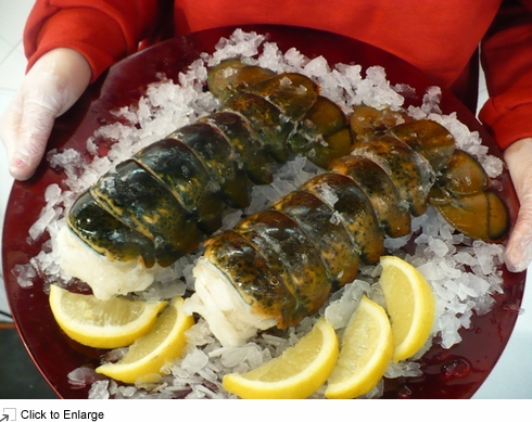Five Eight- to Ten-Ounce Canadian Lobster Tails - Wholey.com