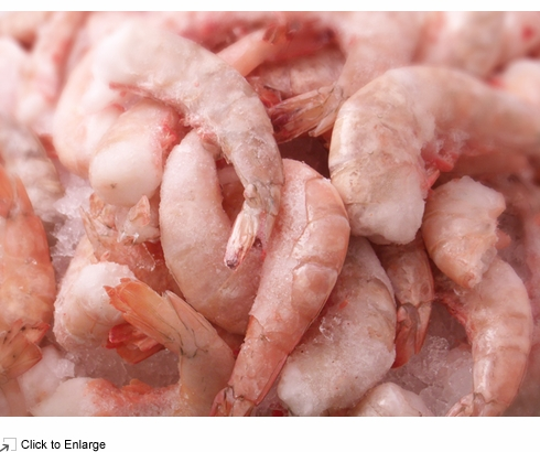 USA Wild Caught * Jumbo Gulf  Shrimp * 16-20 count 5 lb. bag