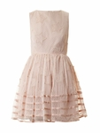 Pink Starembroidered Tuelle Dress