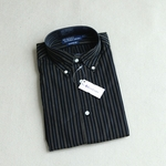 Polo Ralph Lauren Blue Shirt Botton Down