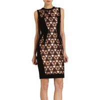 Brown Lace Panel Dress
