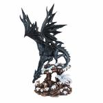 Black Dragon & White Hatchling