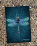 'Damask Dragonfly' Journal by Brigid Ashwood