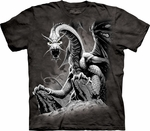Dragon Shirts
