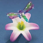 Glass Lily with a Dragonfly