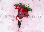 'Sugar Wyrm Strawberry'<BR>by Ash Evans