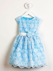 Blue Spring Embroidered Organza Dress