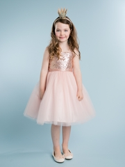 Blush Sequin Top Dress  With Tulle Skirt