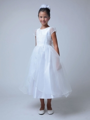 Bodice Pleated Crinkle Organza Dress