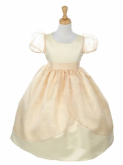 Champagne Satin And Organza Holiday Dress