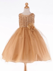 ChampagneTulle Skirt Holiday Dress with Rosette Bodice