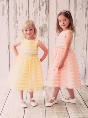 Classic Chenille Stripe Organza Flower Girl Dress