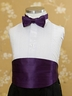 Color Bowtie Set for Ring Bearer