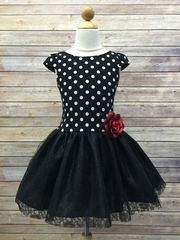 Cute Polka Dot Dress with Lace and Tulle Skirt