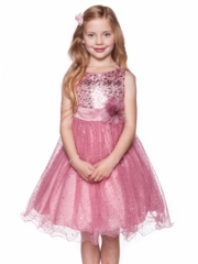Dusty Rose Dress with Sequince Bodice