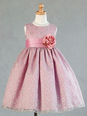 Infant  Lace Overlay Pattern Holiday Dress