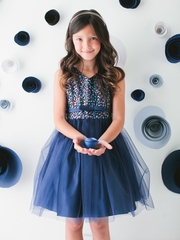 Navy Sequin Tulle Holiday Dress