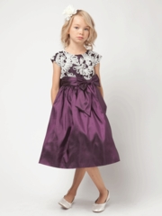 Plum Taffeta & Fan Embroidered Mesh Dress