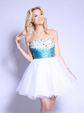 Ruched Waist and Tulle Short Prom Dress