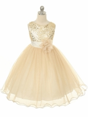 Soft Tulle Skirt Holiday Dress with Sequince Bodice