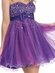 Sparkling Bodice with Overlay Short Prom Dress