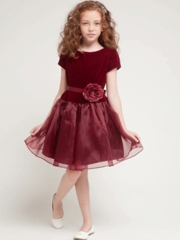 Trendy Short Velvet Bodice dress With Organza Skirt