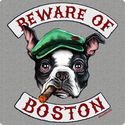 Beware Of Boston T-Shirt
