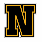 Black & Gold Letter Stickers (N)
