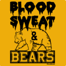 Blood Sweat And Bears T-Shirt