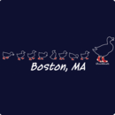 Boston Ducks On The Common T-Shirt
