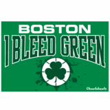 Boston - I Bleed Green Sticker