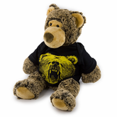 Fan Bear Stuffed Animal and Shirt