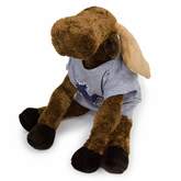 Fan Moose Stuffed Animal and Shirt