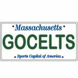 GOCELTS License Plate Sticker